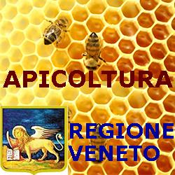 VENETO.APICOLTURA