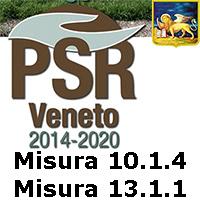 Veneto.PSR.misura.1014 1311