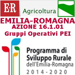 EMILIA ROMAGNA AGRICOLTURA.  GRUPPI OPERATVI DEL PEI AZIONE 16.1.01