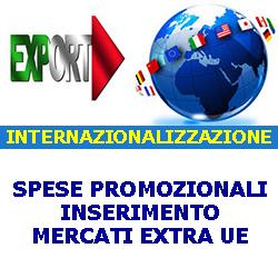 INTERNAZIONALIZZAZIONE SPESE PROMOZIONALI INSERIMENTO MERCATI EXTRA UE 250