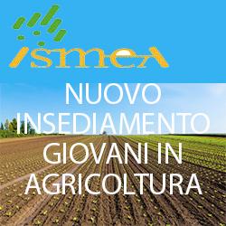 ISMEA NUOVO INSEDIAMENTO GIOVANI IN AGRICOLTURA