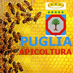 PUGLIA  APICOLTURA