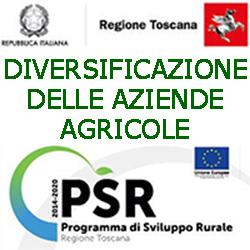 TOSCANA DIVERSIFICAZIONE DELLE AZIENDE AGRICOLE