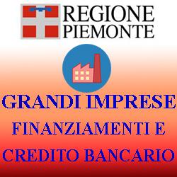 PIEMONTE GRANDI IMPRESE  FINANZIAMENTI E CREDITO BANCARIO