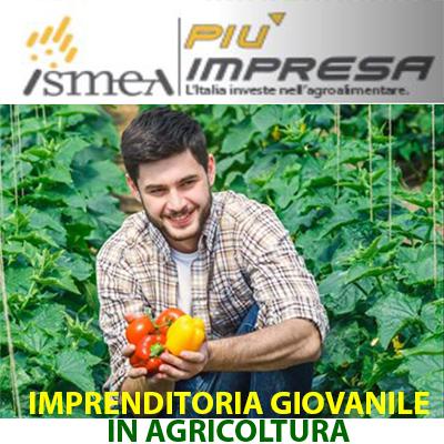 ISMEA PIUì IMPRESA IMPRENDITORIA GIUVANILE IN AGRICOLTURA