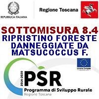 TOSCANA PSR AZIONE 8 4