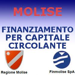MOLISE FINANZIAMENTO PER  CAPITALE CIRCOLANTE 2