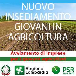 lombardia allavviamento di imprese  per i giovani agricoltori