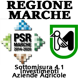marche psr misura 4.1 Investimenti  nelle aziende agricole